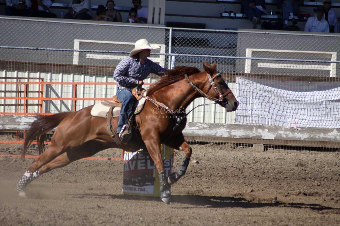barrel racing rodeo 2455