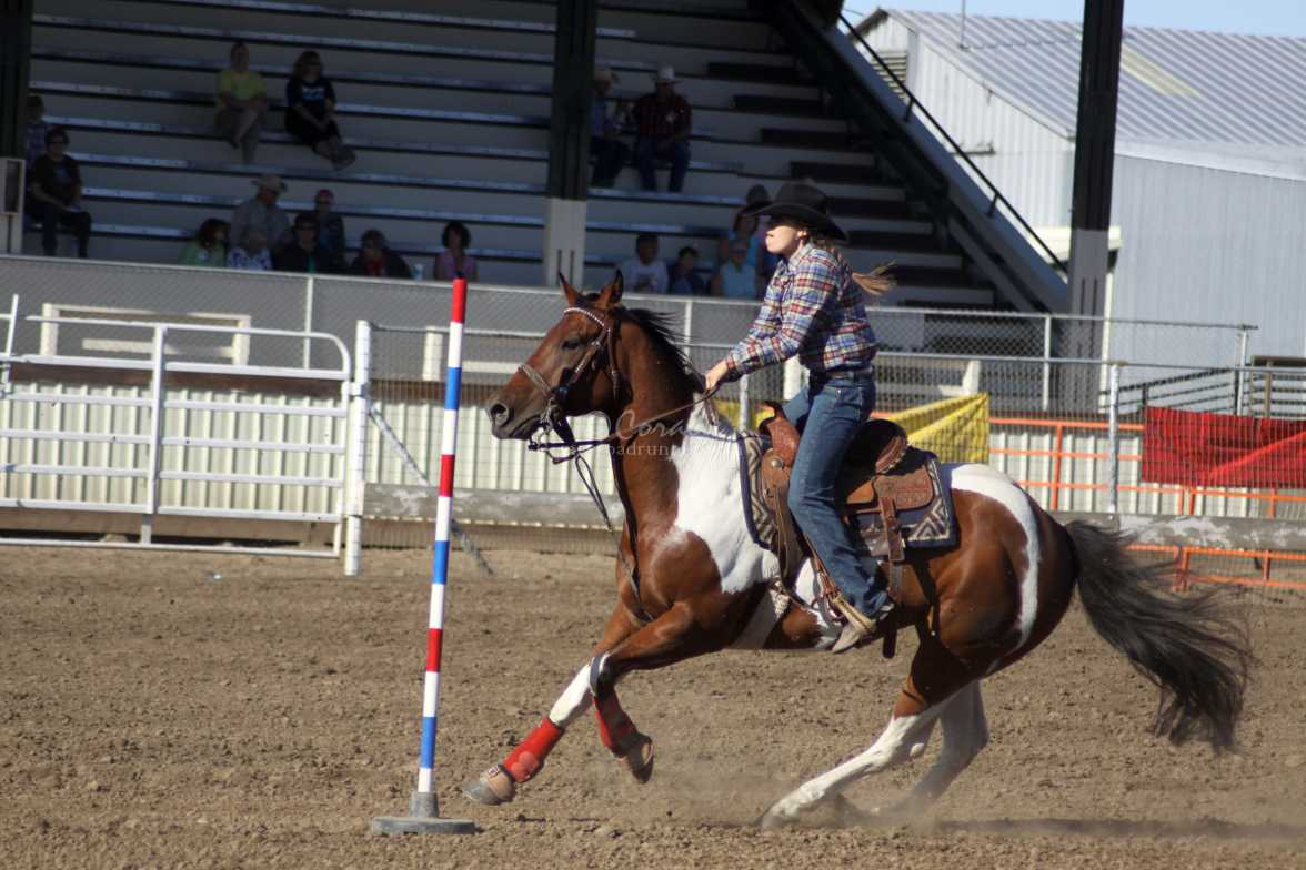 rodeo 3974