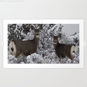 Mule Deer in the Oregon Snow Art Print