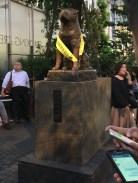 Hachiko Statue. Great story.