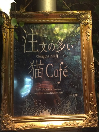It really exists. There are owl cafes, bunny cafes, cat cafes. You name it.