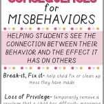 logical consequences for misbehavior