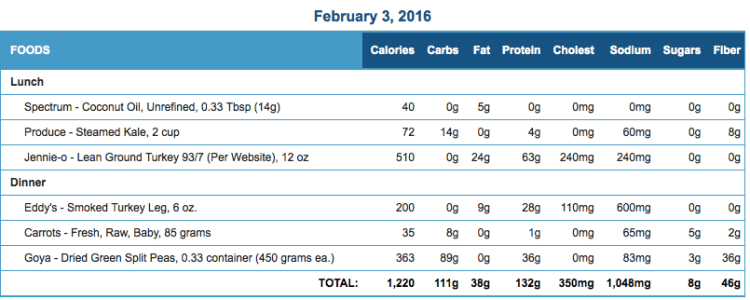 Mike's Diet Journal Entry for February 3 2016