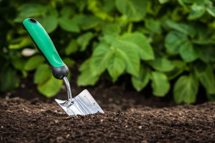 Spade in dirt