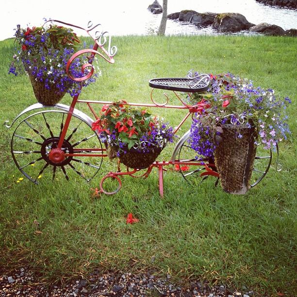 20120824 Floral bike