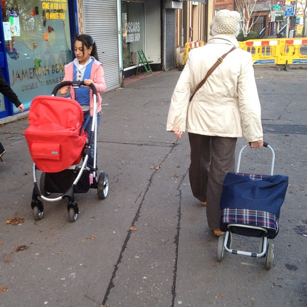 20121126 Pedestrian carts