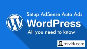 How to Setup Adsense Auto Ads in Wordpress ?