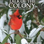Talk Of The Colony- January 2018