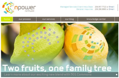 """Two fruits, one family tree"" graphic by MRW Web Design"
