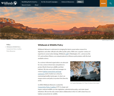 "The internal ""policy"" page of Wildlands Network"