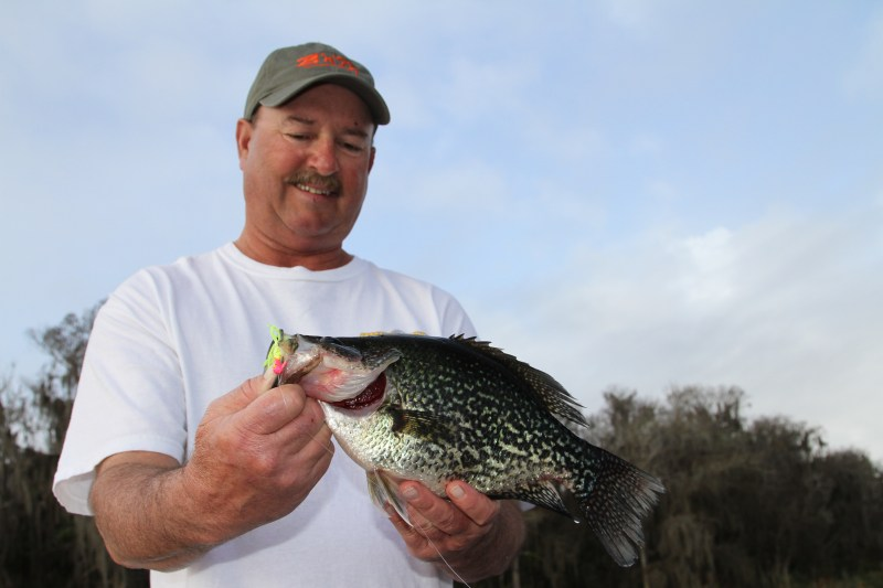 Big summer crappie are not very aggressive, but spider rigging helps coax those tough bites for pros like Mike Parrot, who partners with Whitley Outlaw in tournaments.