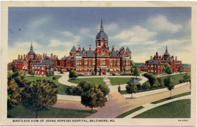 Bird's-Eye View of Johns Hopkins Hospital, Baltimore. Private collection.