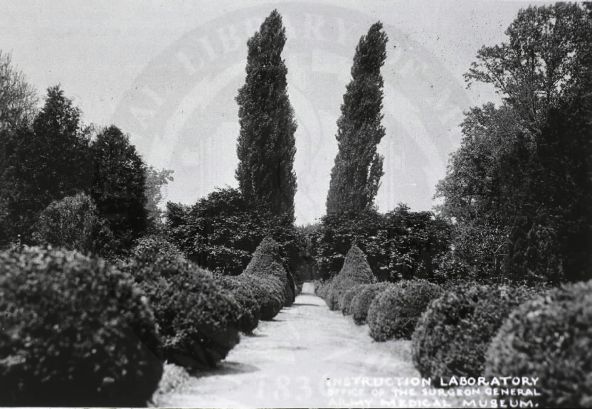 U.S. Army General Hospital, Baltimore, Maryland. : View of gardens. Images from the History of Medicine Collection, Order No. A08890. National Library of Medicine, History of Medicine Division