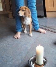 ...but he's cautious about the candle.