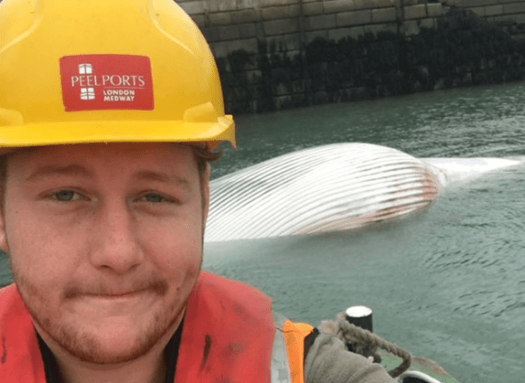 Jack Smedley and the whale carcass he and his crew brought into Sheerness docks