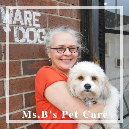 Ms. B's Pet Care -Best Dog Walker Seaport