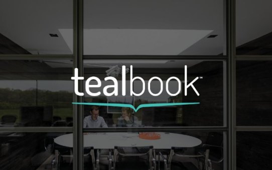 tealbook Global Launch - Lessons Learned
