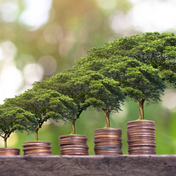 Sustainability – It's the New Black for Strategic Sourcing and Procurement