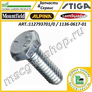 Болт М8x30 DIN 933 GGP 112793701/0 / 1136-0617-01