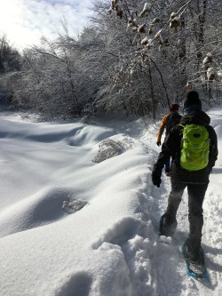 Snowshoeing Wolf Trail