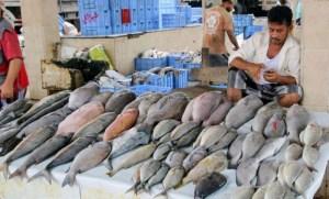صادرات الأسماك تلهب الأسعار في أسواق مناطق سيطرة الشرعية اليمنية