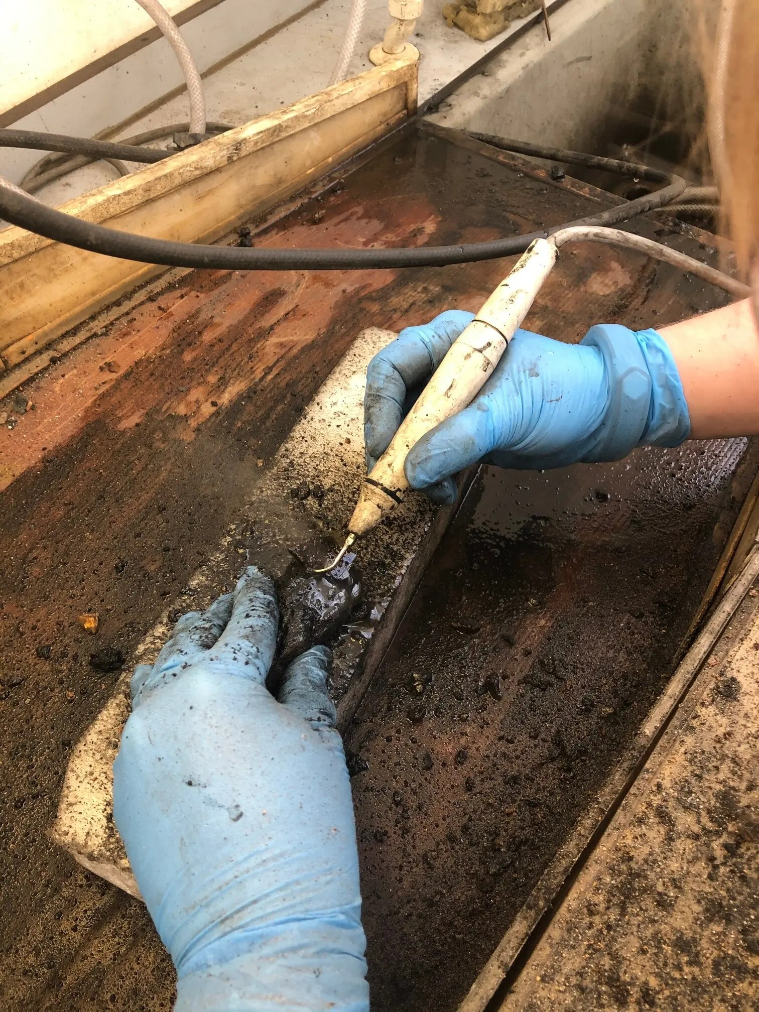 Verity Landrock using an air-scribe to remove concretion from a find from the Rooswijk