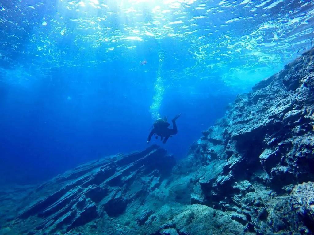 Mateusz Polakowski diving
