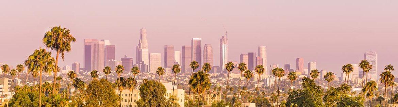 LA skyline with palm trees