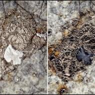 The Chelyabinsk meteorite