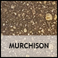 Meteorite murchison