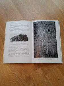 Meteorites book moss 3