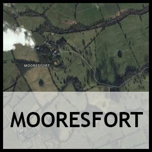 Mooresfort