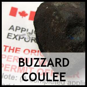 Buzzard coulee