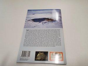 Alain carion meteorite book (3)