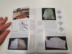 Alain carion meteorite book (7)