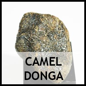 Camel donga
