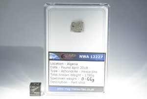 Nwa 12227 howardite (32)