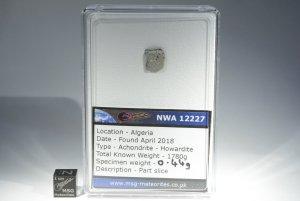 Nwa 12227 howardite (37)