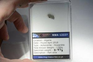 Nwa 12227 howardite (48)