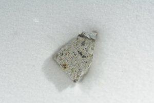 Nwa 12227 howardite (50)