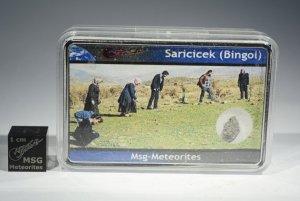 Saricicek bingol (9)