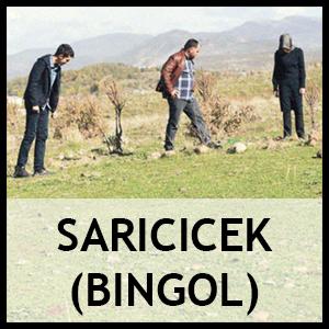Saricicek