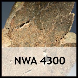 NWA 4300