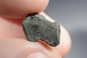 Tarda carbonaceous (20)