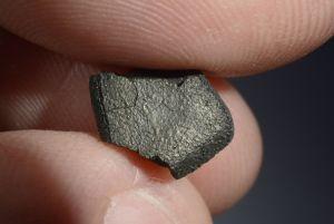 Tarda carbonaceous (31)