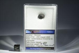 Tarda carbonaceous (36)