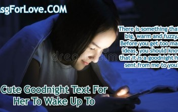 Cute Goodnight Text For Her
