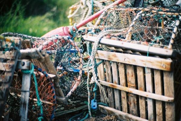 lobsterpots