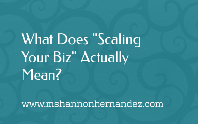 """What does """"Scaling Your Biz"""" Really Mean?"""
