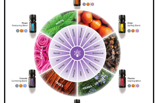 doTERRA Essential Oils Uses for Emotional Balance